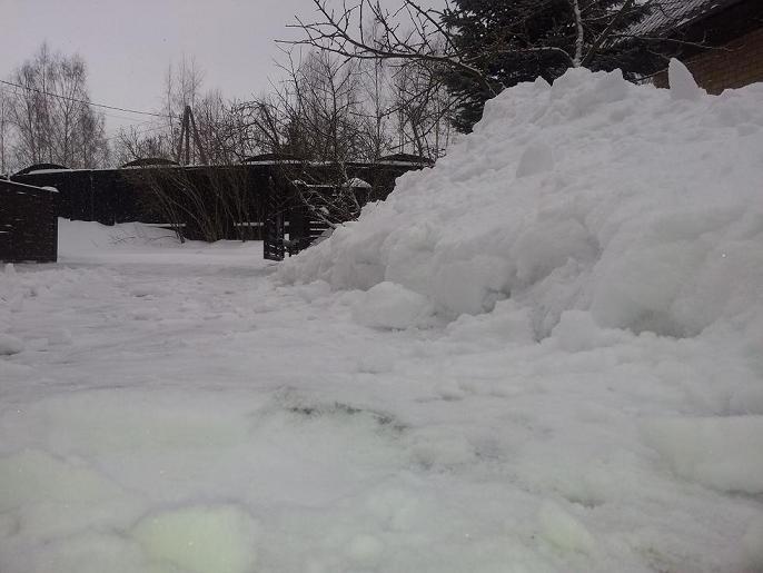 Diena bildēs Sniegs11