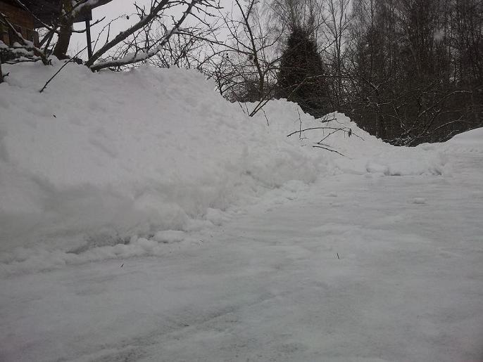 Diena bildēs Sniegs21